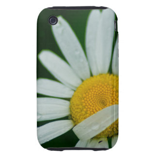 daisy tough iPhone 3 cover