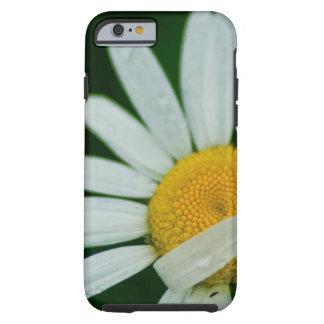 daisy tough iPhone 6 case