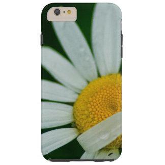 daisy tough iPhone 6 plus case