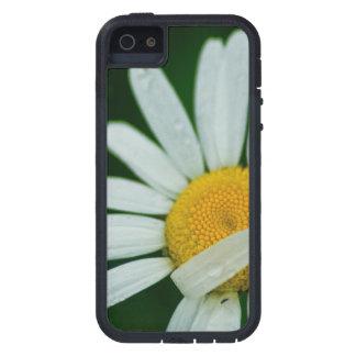 daisy tough xtreme iPhone 5 case