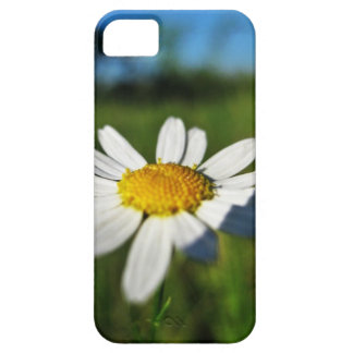 Daisy up iPhone 5 case