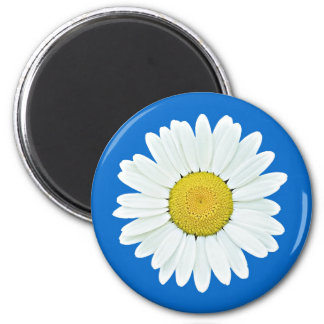 Daisy Wildflower Magnet