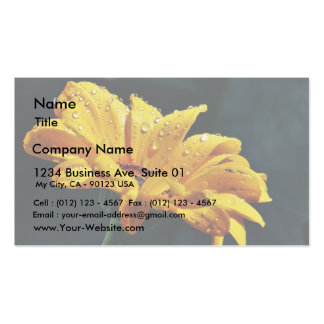 Daisy With Raindrops Business Card