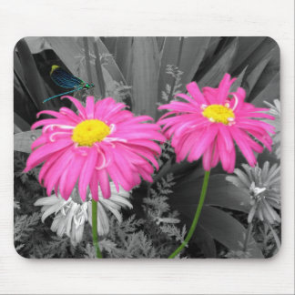 Daisys and Dragonflys Mouse Mat