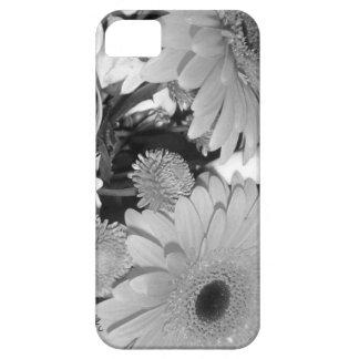 Daiys iPhone 5 Covers