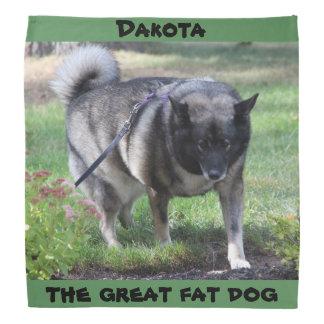 Dakota, the great fat dog do-rags