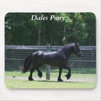 Dales Pony Trot Mouse Mat