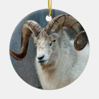 Dall Sheep Ornament
