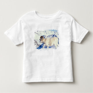 dall sheep, Ovis dalli, full curl ram on a Toddler T-Shirt