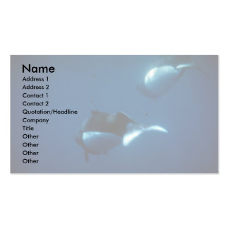 Dall's porpoise Double-Sided standard business cards (Pack of 100)