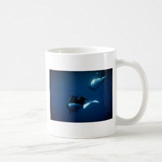 Dall's porpoise mugs