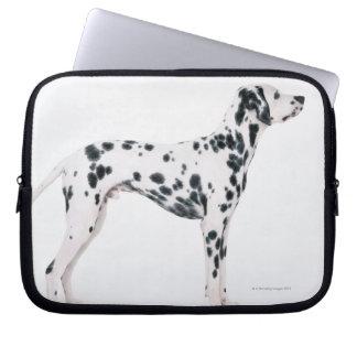 Dalmatian 3 computer sleeve