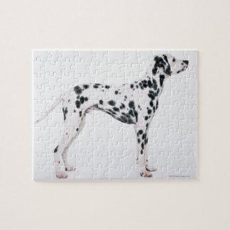 Dalmatian 3 jigsaw puzzle