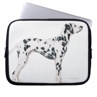 Dalmatian 3 laptop sleeve