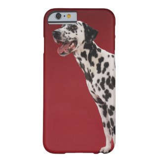 Dalmatian 6 barely there iPhone 6 case