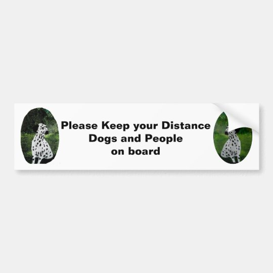 Dalmatian Art Dogs in car warning Bumper Sticker