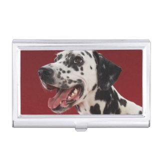 Dalmatian Business Card Holder