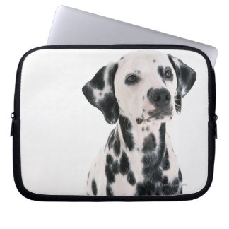 Dalmatian Computer Sleeves