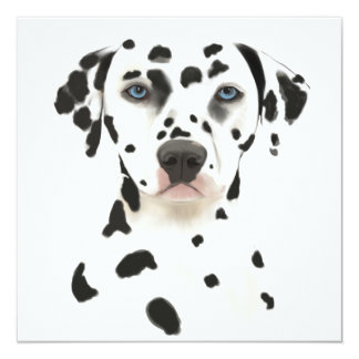 Dalmatian Dog Art 13 Cm X 13 Cm Square Invitation Card