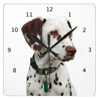 Dalmatian dog beautiful photo wallclocks