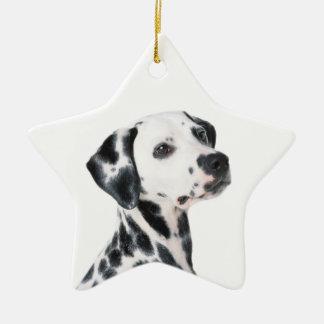 Dalmatian dog beautiful photo, gift ceramic star decoration