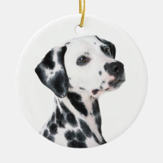 Dalmatian dog beautiful photo, gift round ceramic decoration