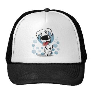 Dalmatian dog gorras