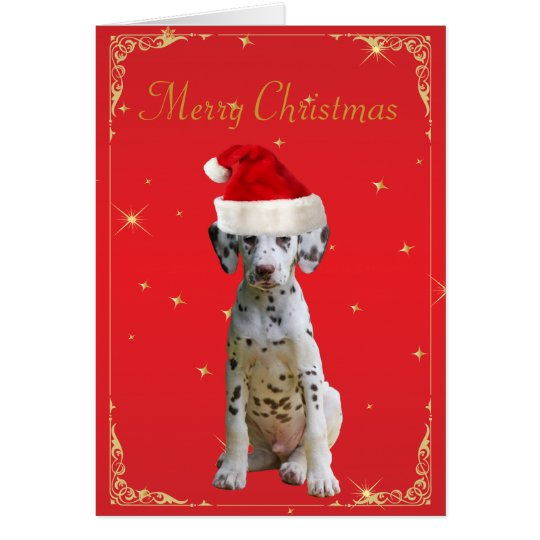 Dalmatian dog in santa hat holiday christmas card