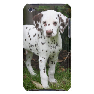 Dalmatian dog puppy ipod touch 4G case, gift idea iPod Touch Cover