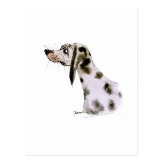 dalmatian dog, tony fernandes postcard