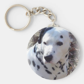 Dalmatian Fire Dog Keychain