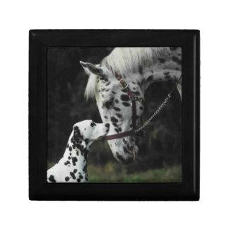 Dalmatian & Her Horse Small Square Gift Box