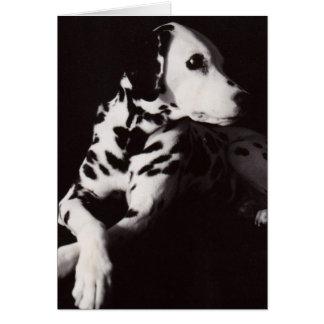 Dalmatian in Black and White Card