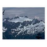 Dalmatian Mountains Postcard