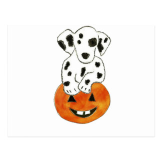 Dalmatian Pumpkin Postcard