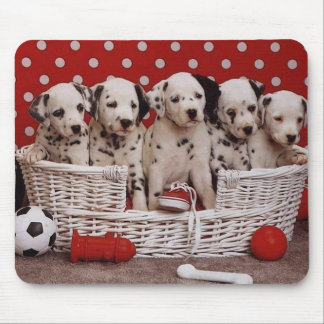 Dalmatian Puppies in a Basket Mousepad
