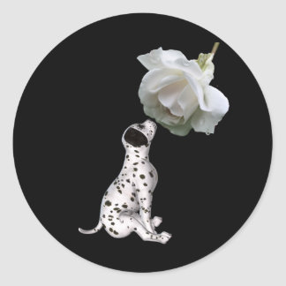 Dalmatian Puppy And White Rose Sticker