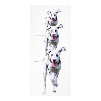 Dalmatian puppy dog bookmark gift idea custom rack cards