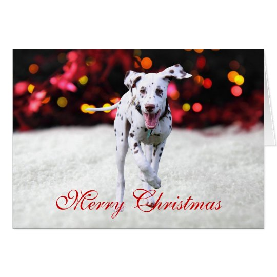 Dalmatian puppy dog cute custom Christmas Card