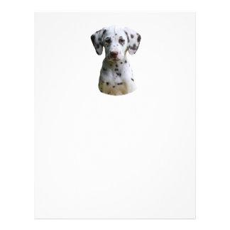 Dalmatian puppy dog photo 21.5 cm x 28 cm flyer