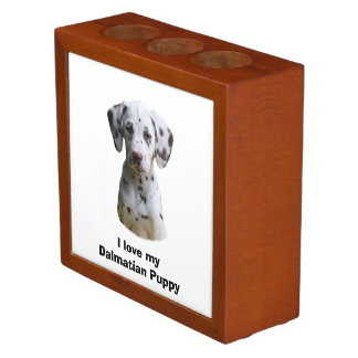 Dalmatian puppy dog photo desk organiser