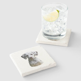 Dalmatian puppy dog photo stone beverage coaster