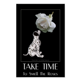 Dalmatian Puppy White Rose Inspirational Quote Poster
