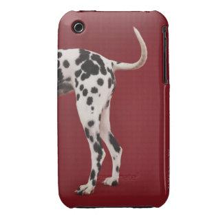 Dalmatian Rear iPhone 3 Cases