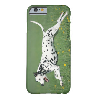 Dalmatian Running Barely There iPhone 6 Case