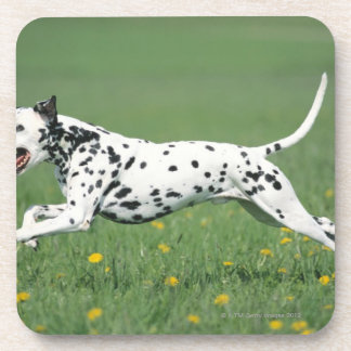 Dalmatian Running Drink Coaster