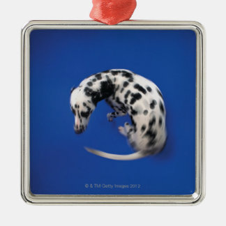 Dalmatian spinning Silver-Colored square decoration