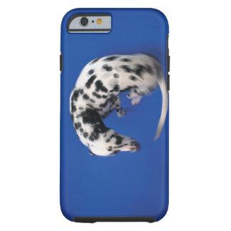 Dalmatian spinning tough iPhone 6 case