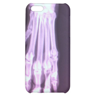 Dalmatian Xray iPhone 5C Cases