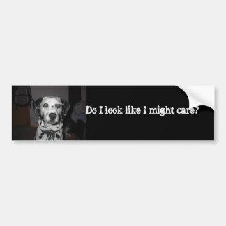 Dalmatians care car bumper sticker